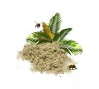 Пальмовая пыльца (Весовой) 1кг